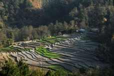 2011-01尼泊爾精華122