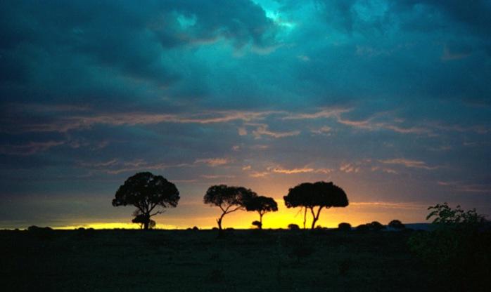1993_158-11A_Masai_Mara_sunset