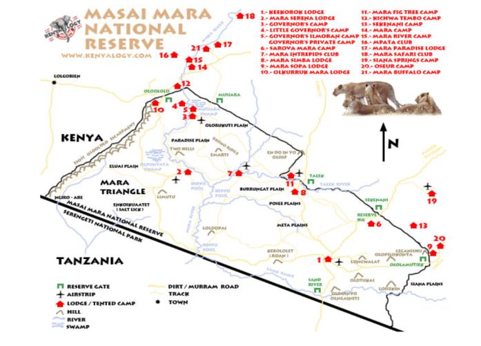 馬賽馬拉國家保護區1.png