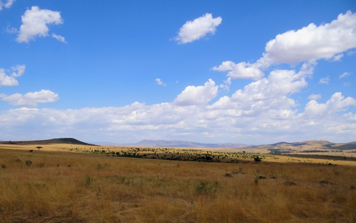 Maasai-Mara-Typical-Scenery